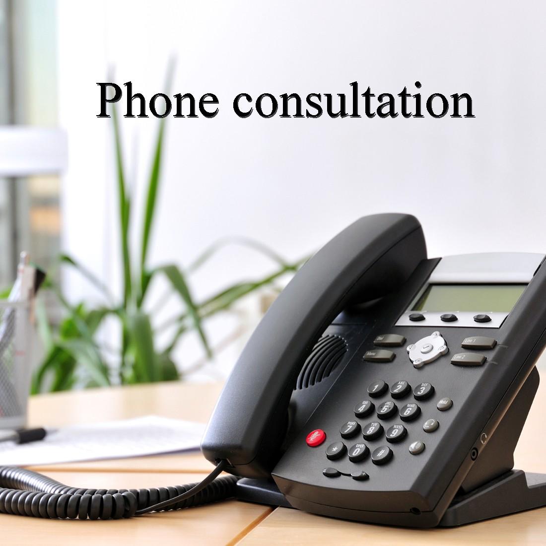 Telephone consultations in GP Practices |Telephone Consultation